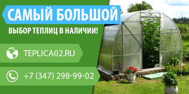 Вы можете купить теплицу из поликарбоната недорого в Уфе в компании «Алексеевские теплицы».